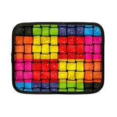 Pinterest Water Colorfull Netbook Case (Small)