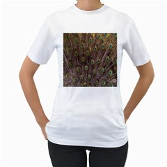 Purple Peacock Feather Wallpaper Women s T-Shirt (White) (Two Sided)