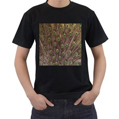 Purple Peacock Feather Wallpaper Men s T-Shirt (Black) (Two Sided)