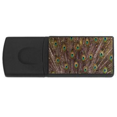 Purple Peacock Feather Wallpaper USB Flash Drive Rectangular (4 GB)