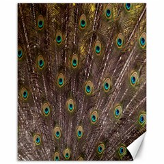 Purple Peacock Feather Wallpaper Canvas 16  x 20