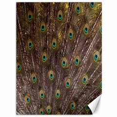 Purple Peacock Feather Wallpaper Canvas 36  x 48