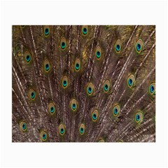 Purple Peacock Feather Wallpaper Small Glasses Cloth (2-Side)