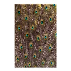 Purple Peacock Feather Wallpaper Shower Curtain 48  x 72  (Small)