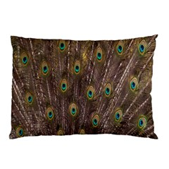 Purple Peacock Feather Wallpaper Pillow Case (Two Sides)