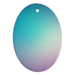 Background Blurry Template Pattern Oval Ornament (Two Sides)