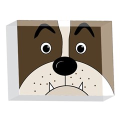 Bulldog face 5 x 7  Acrylic Photo Blocks