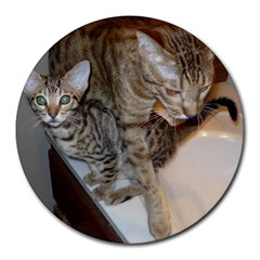 Ocicat Tawny Kitten With Cinnamon Mother  Round Mousepads