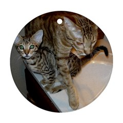 Ocicat Tawny Kitten With Cinnamon Mother  Ornament (Round)