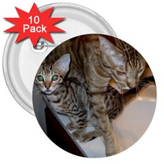 Ocicat Tawny Kitten With Cinnamon Mother  3  Buttons (10 pack)