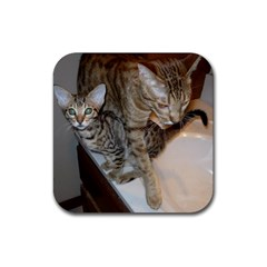 Ocicat Tawny Kitten With Cinnamon Mother  Rubber Coaster (Square)