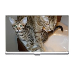 Ocicat Tawny Kitten With Cinnamon Mother  Business Card Holders