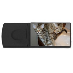 Ocicat Tawny Kitten With Cinnamon Mother  USB Flash Drive Rectangular (1 GB)