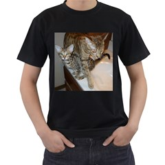 Ocicat Tawny Kitten With Cinnamon Mother  Men s T-Shirt (Black) (Two Sided)