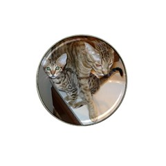 Ocicat Tawny Kitten With Cinnamon Mother  Hat Clip Ball Marker (4 pack)