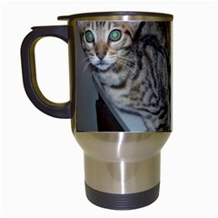 Ocicat Tawny Kitten With Cinnamon Mother  Travel Mugs (White)