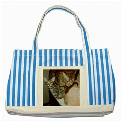 Ocicat Tawny Kitten With Cinnamon Mother  Striped Blue Tote Bag