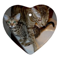 Ocicat Tawny Kitten With Cinnamon Mother  Heart Ornament (2 Sides)
