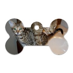 Ocicat Tawny Kitten With Cinnamon Mother  Dog Tag Bone (One Side)