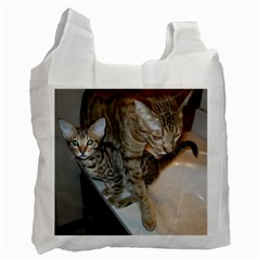 Ocicat Tawny Kitten With Cinnamon Mother  Recycle Bag (Two Side)