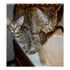 Ocicat Tawny Kitten With Cinnamon Mother  Shower Curtain 66  x 72  (Large)