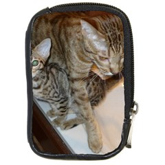 Ocicat Tawny Kitten With Cinnamon Mother  Compact Camera Cases
