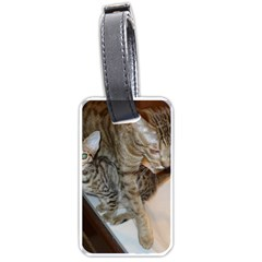 Ocicat Tawny Kitten With Cinnamon Mother  Luggage Tags (One Side)