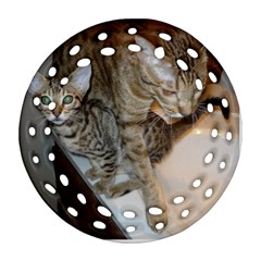 Ocicat Tawny Kitten With Cinnamon Mother  Ornament (Round Filigree)