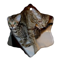 Ocicat Tawny Kitten With Cinnamon Mother  Snowflake Ornament (2-Side)