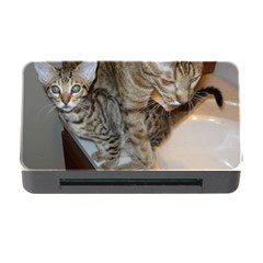 Ocicat Tawny Kitten With Cinnamon Mother  Memory Card Reader with CF