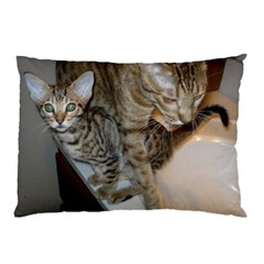 Ocicat Tawny Kitten With Cinnamon Mother  Pillow Case (Two Sides)