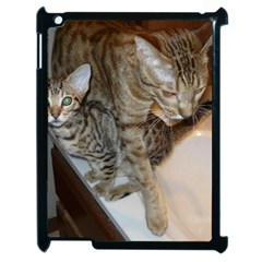 Ocicat Tawny Kitten With Cinnamon Mother  Apple iPad 2 Case (Black)