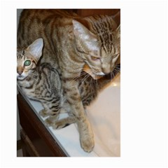 Ocicat Tawny Kitten With Cinnamon Mother  Large Garden Flag (Two Sides)