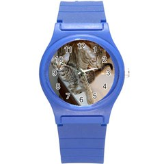 Ocicat Tawny Kitten With Cinnamon Mother  Round Plastic Sport Watch (S)
