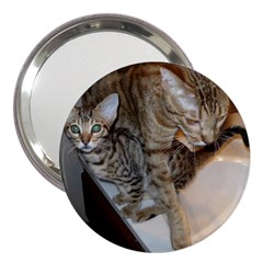 Ocicat Tawny Kitten With Cinnamon Mother  3  Handbag Mirrors