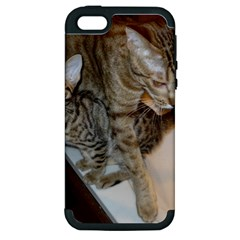 Ocicat Tawny Kitten With Cinnamon Mother  Apple iPhone 5 Hardshell Case (PC+Silicone)