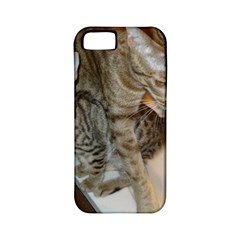 Ocicat Tawny Kitten With Cinnamon Mother  Apple iPhone 5 Classic Hardshell Case (PC+Silicone)