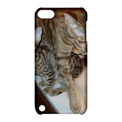 Ocicat Tawny Kitten With Cinnamon Mother  Apple iPod Touch 5 Hardshell Case with Stand