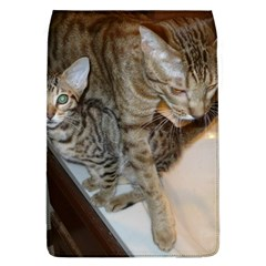 Ocicat Tawny Kitten With Cinnamon Mother  Flap Covers (L)