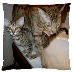 Ocicat Tawny Kitten With Cinnamon Mother  Large Flano Cushion Case (One Side)