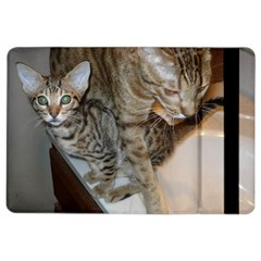 Ocicat Tawny Kitten With Cinnamon Mother  iPad Air 2 Flip