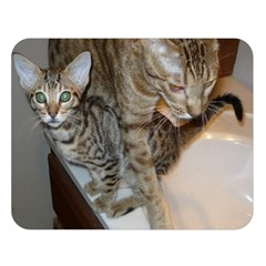 Ocicat Tawny Kitten With Cinnamon Mother  Double Sided Flano Blanket (Large)