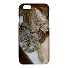 Ocicat Tawny Kitten With Cinnamon Mother  iPhone 6/6S TPU Case
