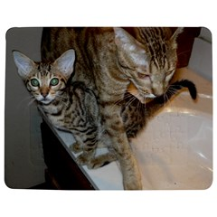 Ocicat Tawny Kitten With Cinnamon Mother  Jigsaw Puzzle Photo Stand (Rectangular)