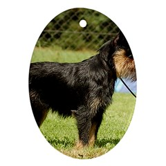 Brussels Griffon Full  Ornament (Oval)