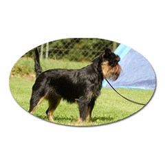 Brussels Griffon Full  Oval Magnet
