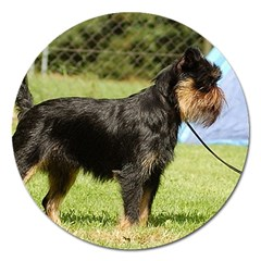 Brussels Griffon Full  Magnet 5  (Round)