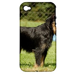 Brussels Griffon Full  Apple iPhone 4/4S Hardshell Case (PC+Silicone)