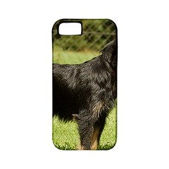Brussels Griffon Full  Apple iPhone 5 Classic Hardshell Case (PC+Silicone)