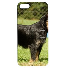 Brussels Griffon Full  Apple iPhone 5 Hardshell Case with Stand